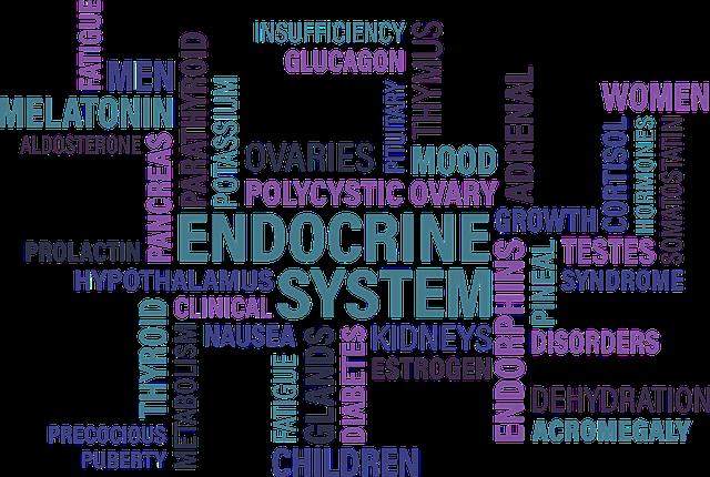 Endokrini-sustav-Bioandina.png